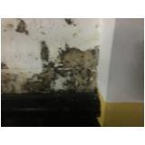 impermeabilização para paredes externas preço Parque Cruzeiro do Sul